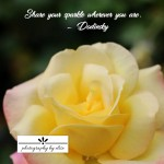 Yellow Pink Rose Sparkle10×10